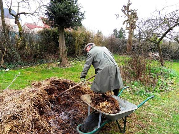 Good sheep manure for a happy garden./ Easter : a renascence !